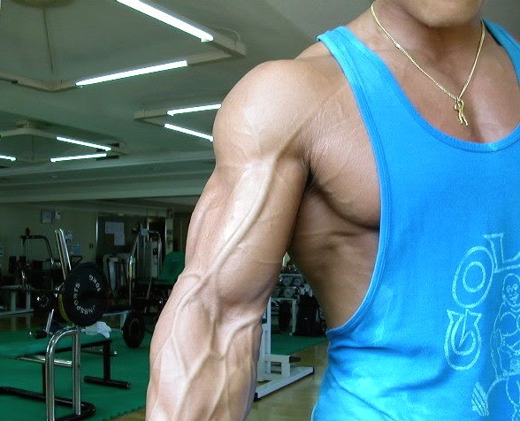 veins are the new abs | arnold zwicky's blog, Cephalic Vein