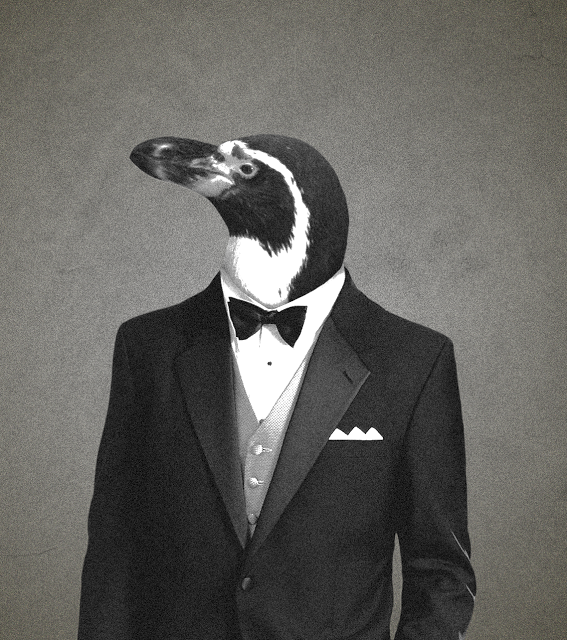 Penguins And Tuxedos Arnold Zwicky S Blog